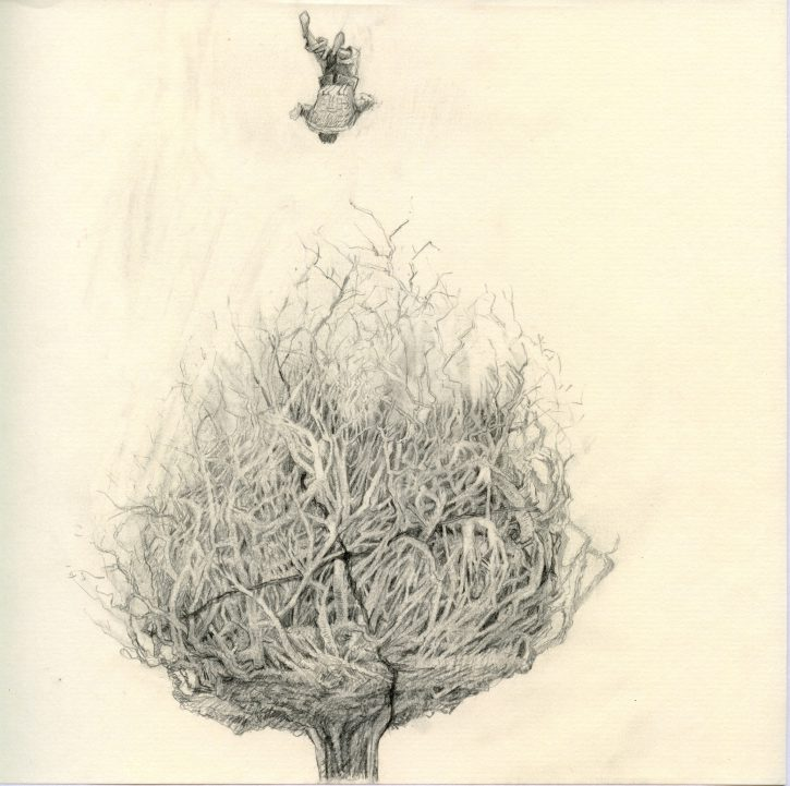 Adrian Johnston_Pencil on Paper_Rootball_02